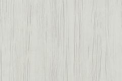 древесина белая